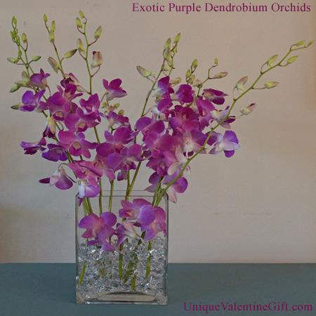Exotic Purple Dendrobium Orchid Arrangement
