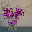 Exotic Purple Dendrobium Orchid Arrangement