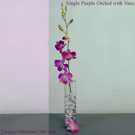 Single Purple Dendrobium Orchid with Vase