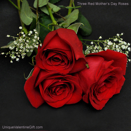 Three Red Mother's Day Roses